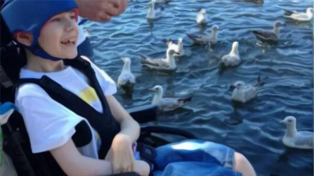 Sadece Bir Tekerlekli Sandalye Nathan'ın Hayatını Değiştirmeye Yetecek